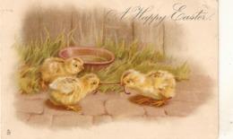 """Birds. Three Chicks"" Tuck Easter Greetings Series PC # 2819 - Tuck, Raphael"