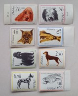 Poland Pologne Set 8 Stamps Dog Breeds Races De Chiens Hunde Cani 1963 Unused - Cani