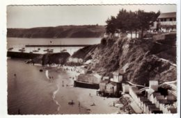 Cpsm  Binic  Plage De L'avant Port - Binic