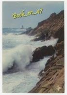 {80901} 29 Finistère Grosse Mer à La Pointe Du Raz - Cléden-Cap-Sizun