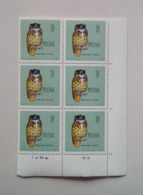 POLAND, BLOCK OF 6 STAMPS 50 GR Protected Birds Eagle-owl Oiseaux Protégés Hibou Aigle 1960 Unused 2 - Eagles & Birds Of Prey