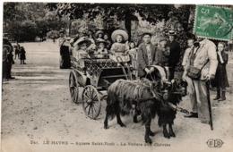 Le Havre 1908 - Voiture Aux Chèvres - Square Saint-Roch - ELD 241 - Le Havre