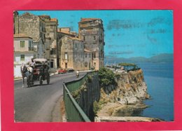 Modern Post Card Of Corfu,Kérkira, Ionian Islands, Greece,X36. - Greece
