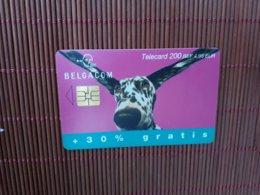 Phonecard Dog Belgium Used - Mit Chip
