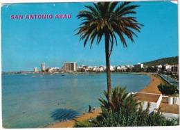 San Antonio - Vista General - (Ibiza, Baleares) - Ibiza