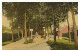 Hoogstraten De Lindendreef  (2927) - Hoogstraten