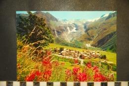 CP 74 Massif Du Mont Blanc Le Village Et Le Glacier Du Tour - Chamonix-Mont-Blanc