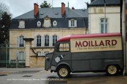 Nuits-Saint-Georges (21)- Maison Moillard (Edition à Tirage Limité) - Nuits Saint Georges