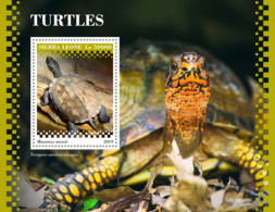 Sierra Leone 2019 Turtles Fauna Turtle S/S SRL190918 - Celebridades