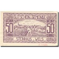 Billet, Autriche, Steinhaus, 50 Heller, Agriculteur, 1920 SPL Mehl:FS 1030Ia - Austria