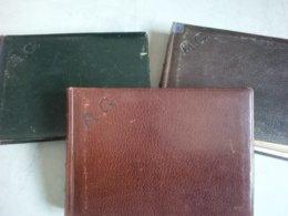 LOT 3 ALBUM DE FAMILLE 1900 ITALIE LUGANO VENISE ET AUTRE SUISSE ENVIRON 400 PHOTO - Alben & Sammlungen