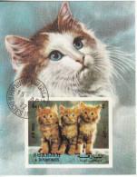 120 Sharjah 1972  Felini: GATTI Chats CATS Gatos Sheet Imperf. Preobliterato - Sharjah