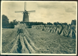 Nederland 1939 Briefkaart G 254 U Molenserie Nr. 21 Bathmen Korenmolen Met Stelling - Postwaardestukken