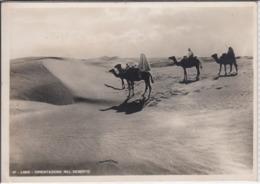 LIBYEN; LIBIA - Orientazione Nel Deserto, Camel, Kamel  1941 - Libye