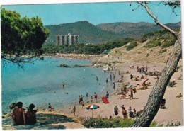 Mallorca - Paguera: Playa - (Mallorca, Baleares) - Mallorca