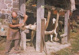 TRADITIONS .. LES PETITS METIERS DE CHEZ NOUS .. LE MARECHAL FERRANT  .. 1989 - Kunsthandwerk