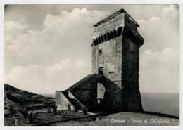 LIVORNO   TORRE   DI  CALAFURIA         (VIAGGIATA) - Livorno