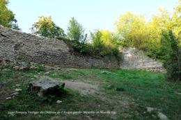 Pompey (54)- Vestiges Du Château De L'Avant Garde (Edition à Tirage Limité) - Autres Communes