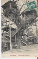 LE PLESSIS ROBINSON. CPA Voyagée En 1910 L'Intérieur Du Vrai Arbre - Le Plessis Robinson