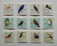 POLAND, SET 12 STAMPS Protected Birds Oiseaux Protégés 1960 Unused - Collections, Lots & Series