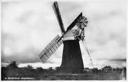 A Norfolk Windmill Moule - Angleterre