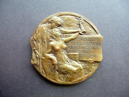 Medaglia Vito Pardo Cinquantenario Scuola Ingegneri Torino 1911 Liberty Rara - Tokens & Medals