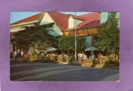 "TAHITI  PAPEETE Le Populaire Restaurant Et Snack Bar  "" WAIMA "" - Tahiti"