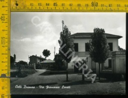 Monza Calò Brianza - Monza