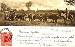 Carreta Em Viagem Para PORTO ALEGRE - Porto Alegre