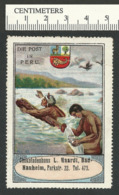 115-22 GERMANY Die Post In Peru Chocolate Stamp Used Crease Repaired - Cinderellas
