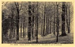 Jemelle - Château Everard - Un Aspect Du Parc Au Printemps - Ed. Arduenna - Rochefort