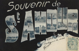 SOUVENIR DE SAINT-AMOUR  1906 - Saluti Da.../ Gruss Aus...