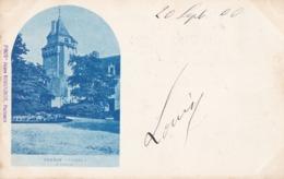 TERNAY - Le Château - Francia