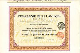 COMPAGNIE  Des FLANDRES - Landbouw