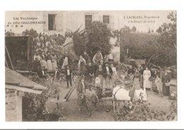 Saint Desert - Vendanges - Vin - Proprietaire Laublanc - Cote Chalonnaise - France