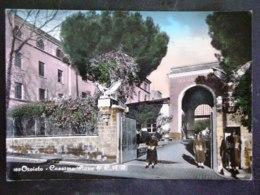 UMBRIA -TERNI -ORVIETO -F.G. LOTTO N°455 - Terni