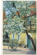 CPA Photochromie Serie 383 N° 5230 Arbre En Fleurs Charrette Maisons - Postcards