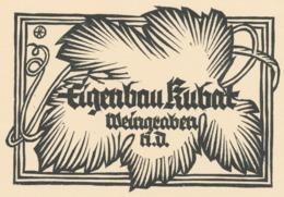 Wijnetiket Of Mededeling Van Wijngaard - Eigenbau Kubat - Otto Feil - Ex-libris
