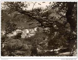 CPSM (Réf :N985) BOCOGNANO (20 2A CORSE DU SUD) - Francia