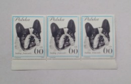 Poland Pologne Strip Bande 3 Stamps 60gr Dog Breeds French Bulldog Races De Chiens Bouledogue Français 1963 Unused - Dogs