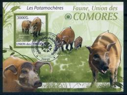 COMORES   2009   Oblit/used   Potamochères - Autres