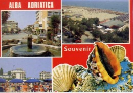 Alba Adriatica - Souvenir - Formato Grande Viaggiata – E 14 - Teramo