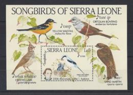 """SIERRA LEONE...QUEEN ELIZABETH II.(1952-NOW)..."""" SONG BIRDS..... ."""".......MINI SHEETS. ...MH... - Passereaux"""