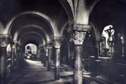Bitonto - Cattedrale - Cripta - Formato Grande Viaggiata – E 14 - Bitonto