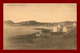 Plougasnou * La Pointe De Primel   ( Scan Recto Et Verso ) - Plougasnou
