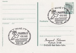 Germany 1993 Postal Stationery Card; Flora Flowers; Orchid Orchis Orchidee;German - Brasilian Ausstellung - Orchideen