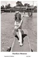 MARILYN MONROE - Film Star Pin Up PHOTO POSTCARD - 201-704 Swiftsure Postcard - Mujeres Famosas