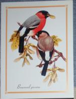 Petit Calendrier De Poche 2007  Oiseau Bouvreuil Pivoine - Calendars