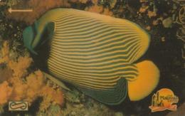 MALASIA. FAUNA MARINA, PECES. Stripe Fish. 10$. 1990. 6MSAA. (015) - Peces