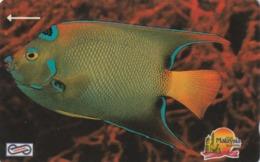MALASIA. FAUNA MARINA, PECES. Blue Fish. 5$. 1992. 16MSAA. (013) - Peces